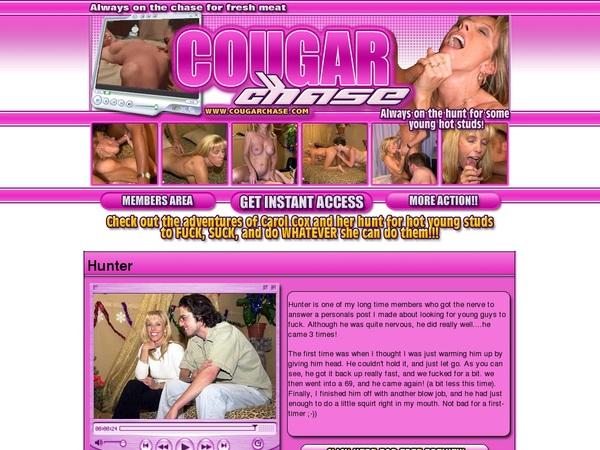 Cougar Chase Passwort
