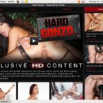 Hard Gonzo Hack Account