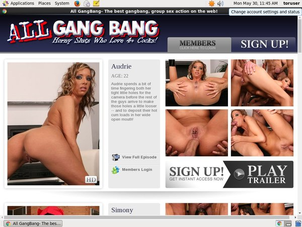 Daily All GangBang Acc