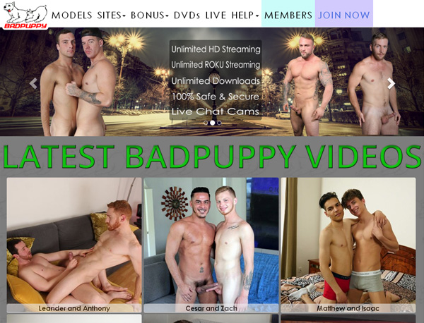 Password Bad Puppy Free