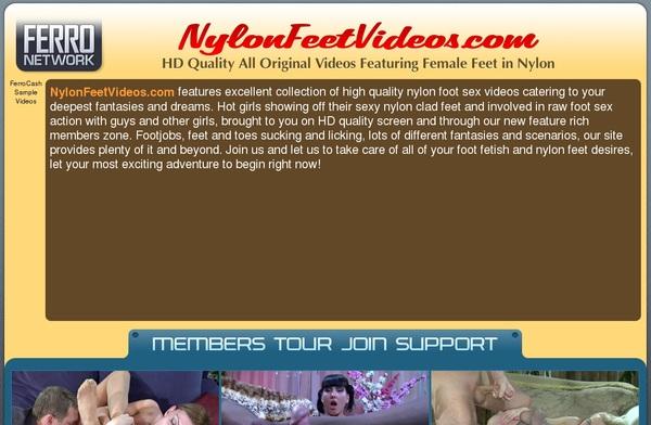 Account Free Nylonfeetvideos.com