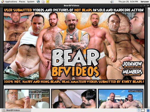 Bear BF Videos Adult Passwords