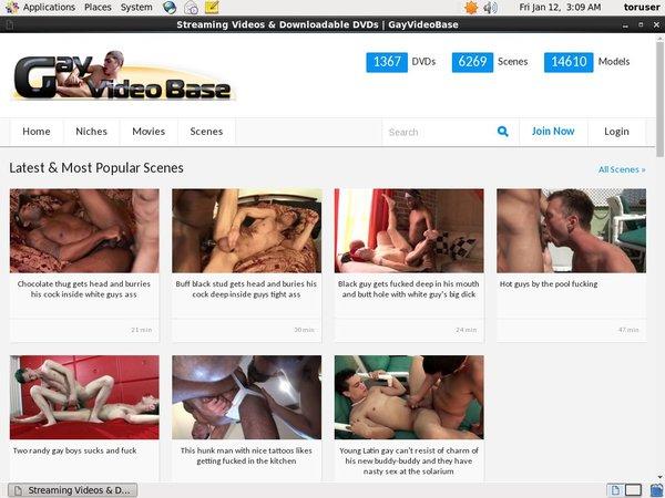 Gay Video Base Pw